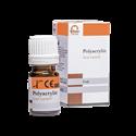 Imaginea Glassy-Cem(Polyacrylin) - Varnish (lac protector)